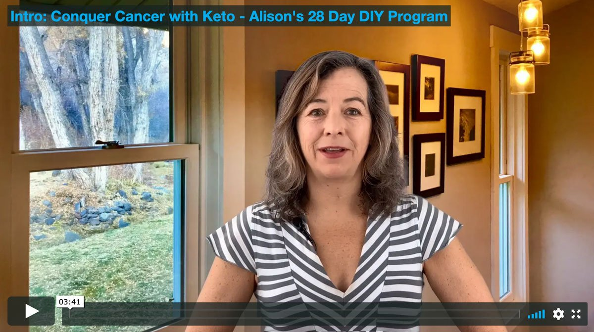 alison gannett keto video program